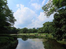 北の丸公園内にある中の池と呼ばれる池と青空の画像です。