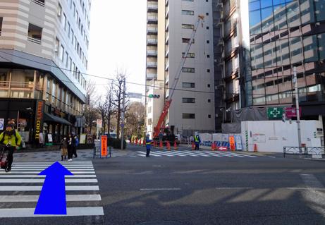 190310shinjukugyoenmae-shinjuku05.JPG