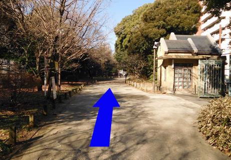 190310shinjukugyoenmae-shinjuku08.JPG